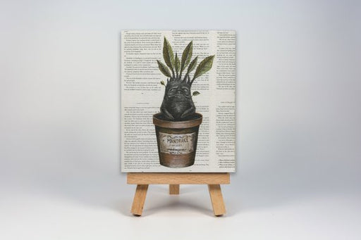 Mini Canvas Print of a Mandrake from Harry Potter