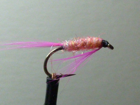 Pink Glister Nymph