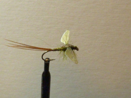Winged Olive Mayfly Spinner