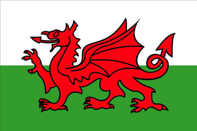 Wales – The Welsh Dragon Flag 30 x 45cm