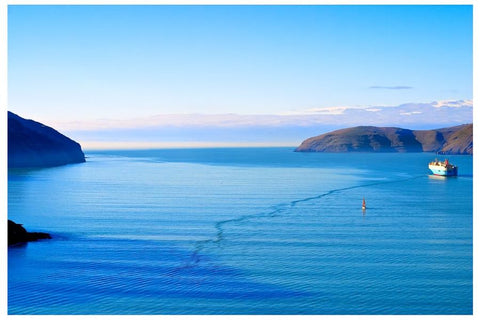 Godley Head, Lyttelton | NZ Art Print - Mode de vie Photography and Photo Presets