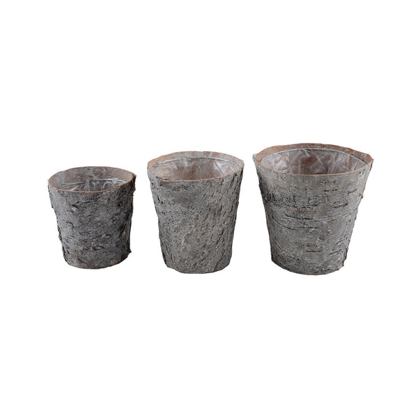 Birch Pots: White Washed