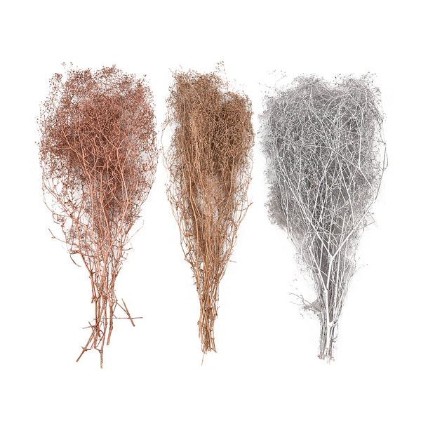 Dried Floral: Metallic Babybreath