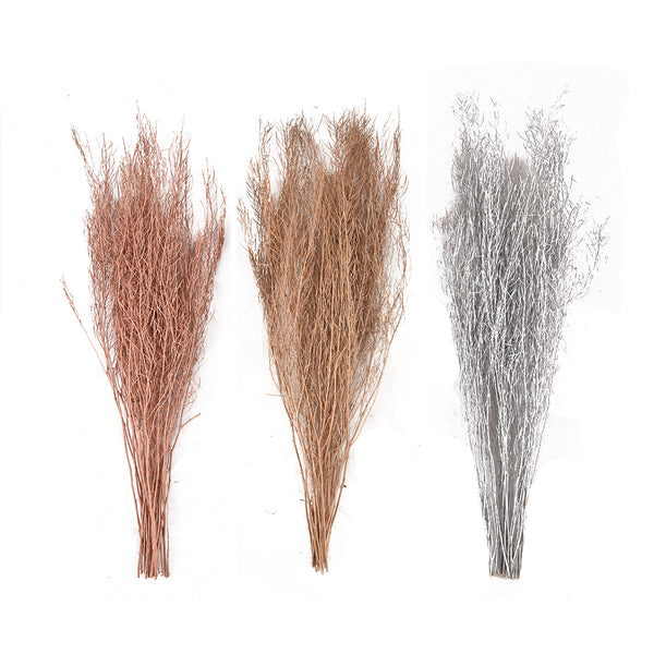 Dried Floral: Metallic Descurainia Sophia