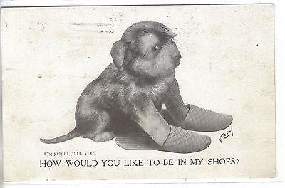 """How Would You Like To Be In My Shoes""-V.Colby 1911 - Cakcollectibles"