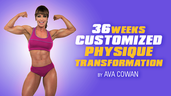 36 Week Customized Physique Transformation - Non Competitor