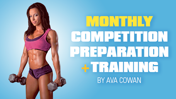 Monthly Competition Preparation + Training - Competitor