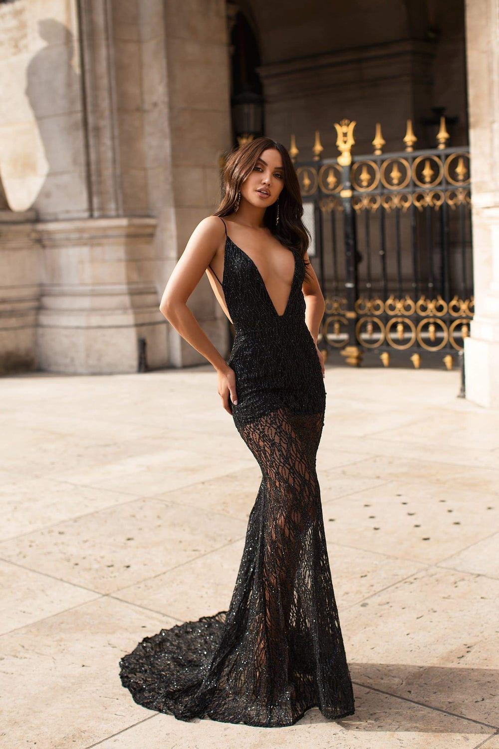 Joella - Black Sheer Glitter Gown with Deep Plunge Neckline & Low Back
