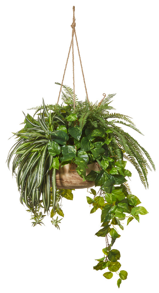 Bush Mix in Dansk Hanging Planter Large