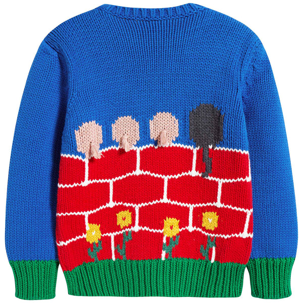 Boys Blue & Red Sweater