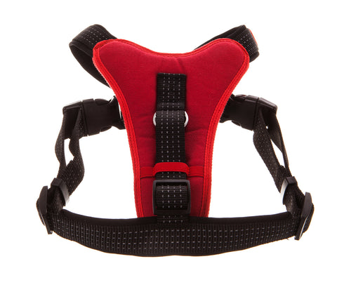 red padded non pull dog harness with black straps