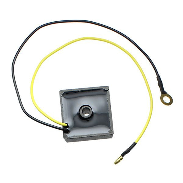 ESR012 Regulator 12V AC