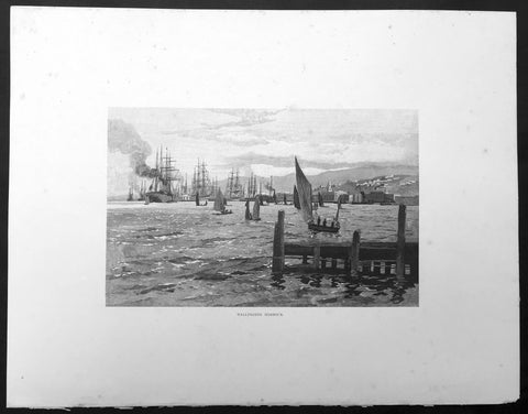 1886 Pic. Australasia Large Antique Print View of Wellington, New Zealand