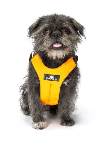Clickit Sport Harness - Boutique @ Guelph Animal Hospital - 1