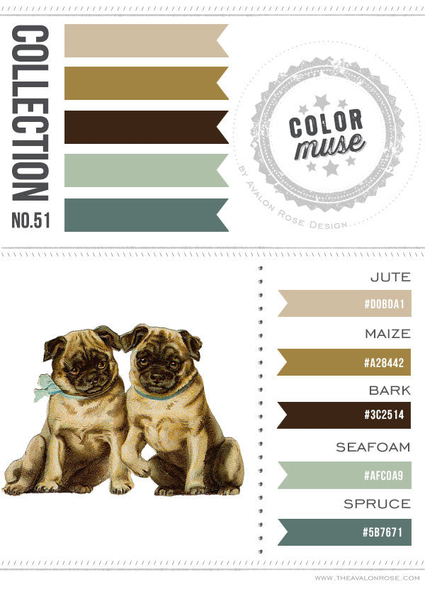Color Muse: Collection No. 51