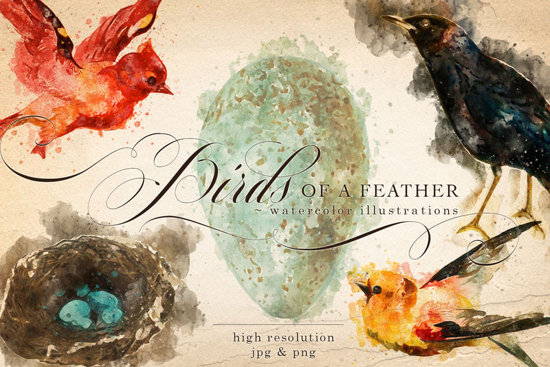 Birds of a Feather Watercolor Graphics