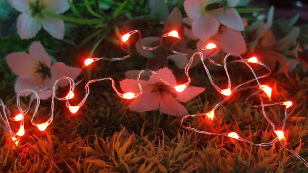 20 LED Copper Fairy Lights - Red