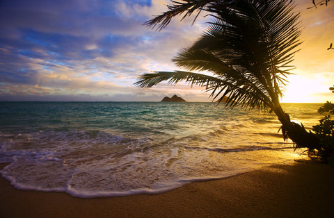 """Heavenly Sea"" Lanikai Beach, Oahu Hawaii Vinyl Print"