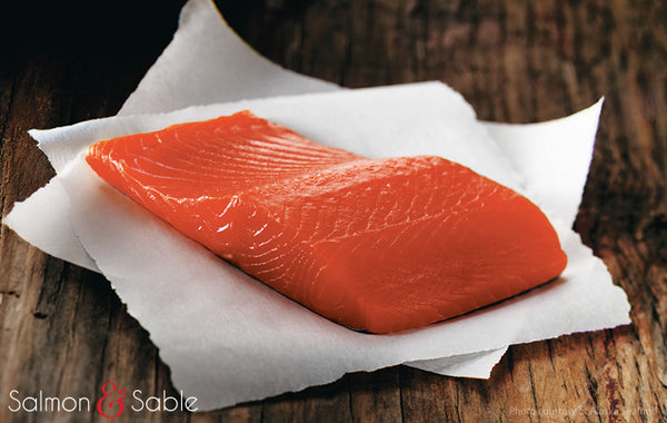 Coho Salmon (Summer Catch)
