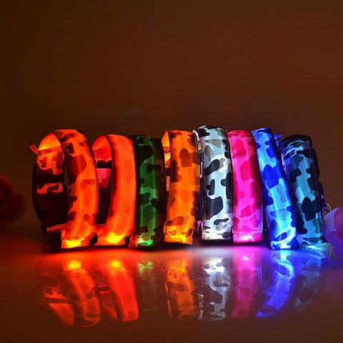 Colored LED Glow Collar  Pets Dog Flashing Light Nylon Leash - Shop4Dancer