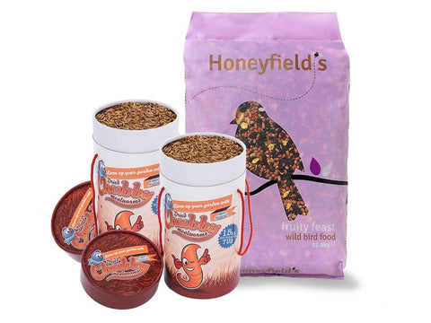 Honeyfield's Fruity Feast & Chubby Mealworm Tub Combo
