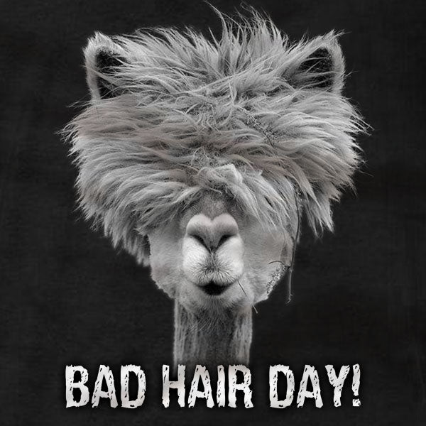 Alpaca Bad Hair Day - T-Shirt - Absurd Ink