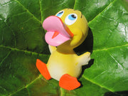 Denzil the Baby Latex Rubber Duck From Lanco Ducks