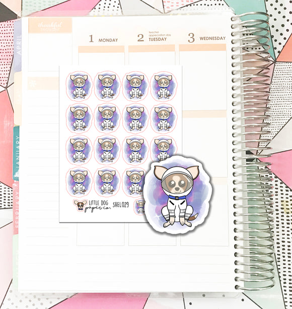 SHEL029 // Space Sheldon // Planner Stickers