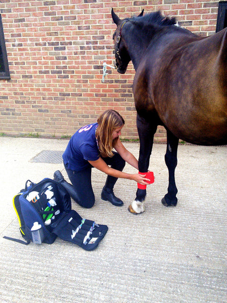 Equine First Aid Backpacks