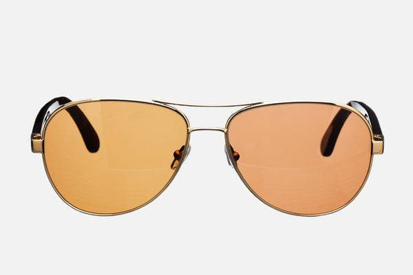 William Sunglasses - Brown Lenses - Front