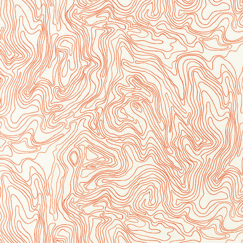 Carolyn Friedlander - Architextures 13506 - Tangerine