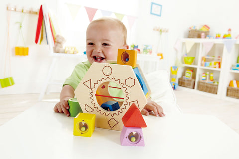 Baby Shake and Match Shape Sorter