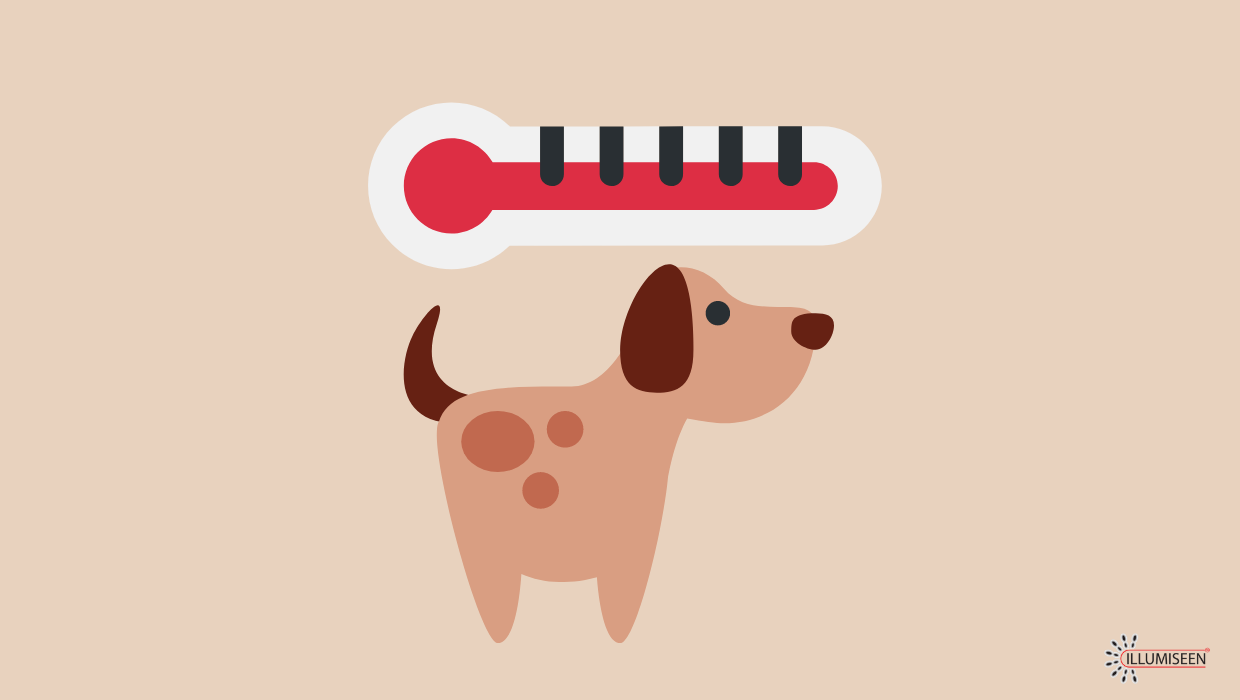 How Do Dogs Regulate Body Temperature?