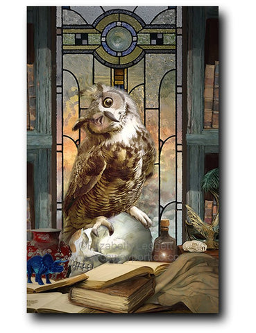 Ekizabeth Leggett | Portico Arts picture of owl in library