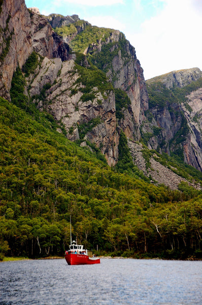 Western Brook Cruise