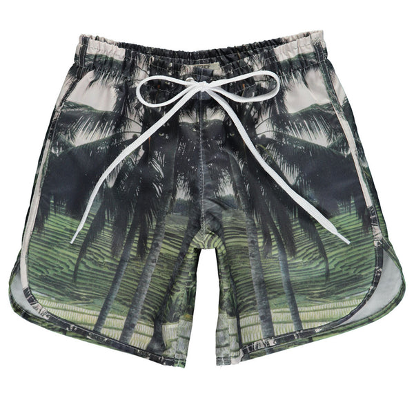 Swim Shorts Long Palm Print