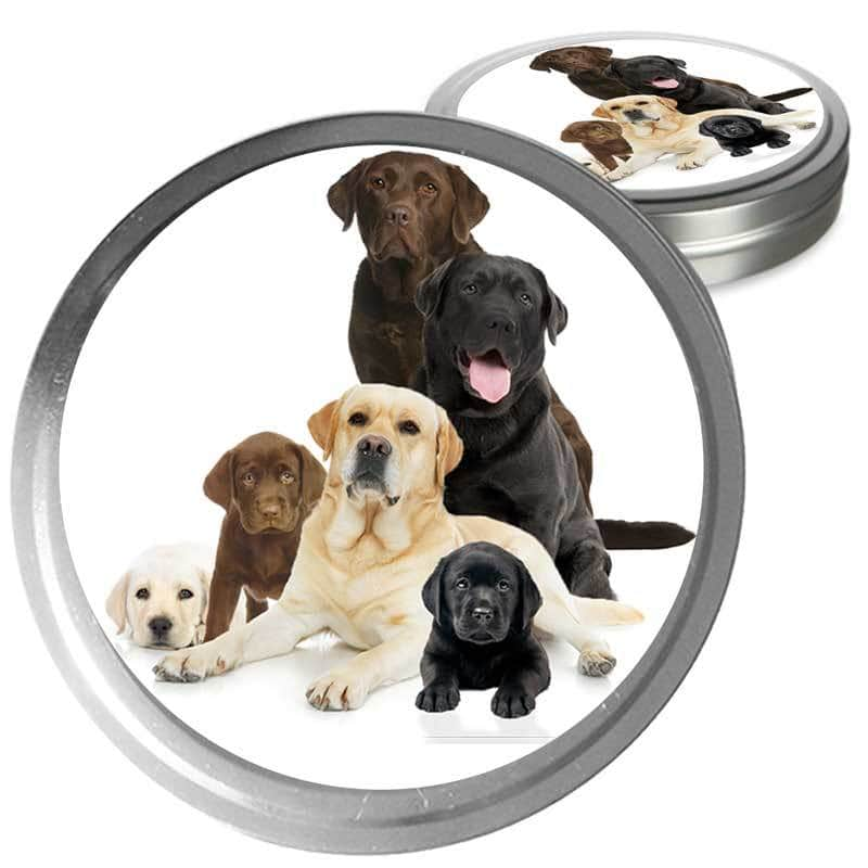 Labrador Retriever gift