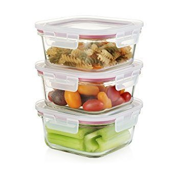 Femora Break-Resistant Borosilicate Food Container with Lid (Set of 3)