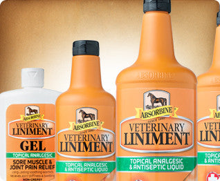 Absorbine Veterinary Liniment
