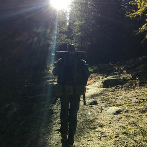 Our Wildway of Life: Yosemite (Part II)