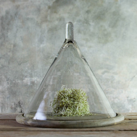 Glass domed cheeseboard
