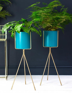 Teal and Gold Tall Plant Stand