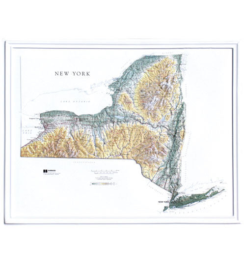 New York State Raised Relief Map