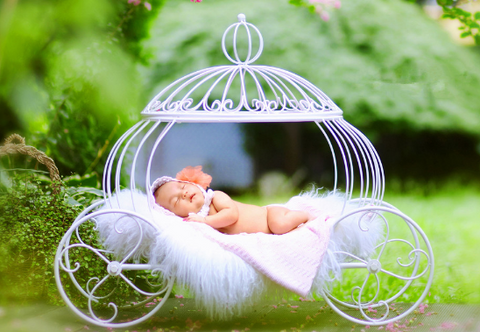 Princess Carriage Posing Prop for Newborn Photography