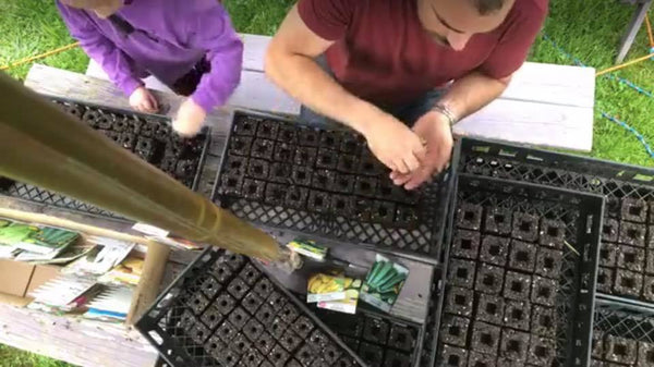 Limited Offering Master Class - Soil Blocks - How to create & manage seedlings & cuttings in soil blocks