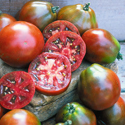 Black Japanese Trifele Heirloom Tomato Seeds (20 seeds)