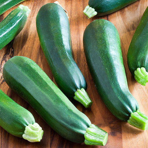 Black Beauty Zucchini Squash (25 seeds)
