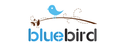 Bluebird Clothing Ballymena