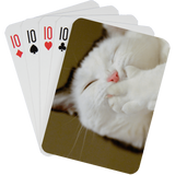 Stock Playing Card Deck - Cute3 - PlayingCardsNow.com