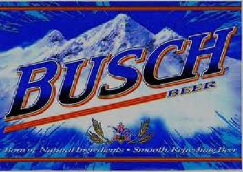Busch 12 Pk Can
